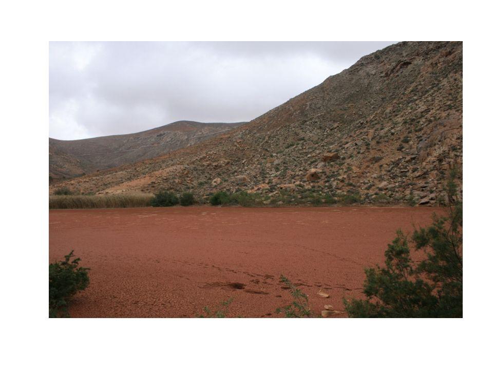 Presa en Fuerteventura