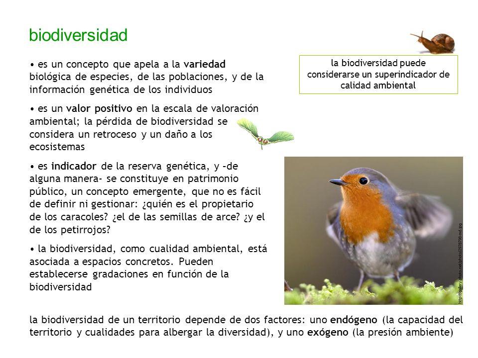 biodiversidad es un concepto que apela a la variedad biológica de especies, de las poblaciones, y de la información genética de los individuos es un v