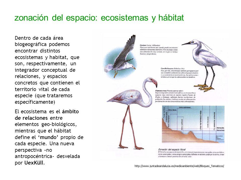 zonación del espacio: ecosistemas y hábitat Dentro de cada área biogeográfica podemos encontrar distintos ecosistemas y habitat, que son, respectivame
