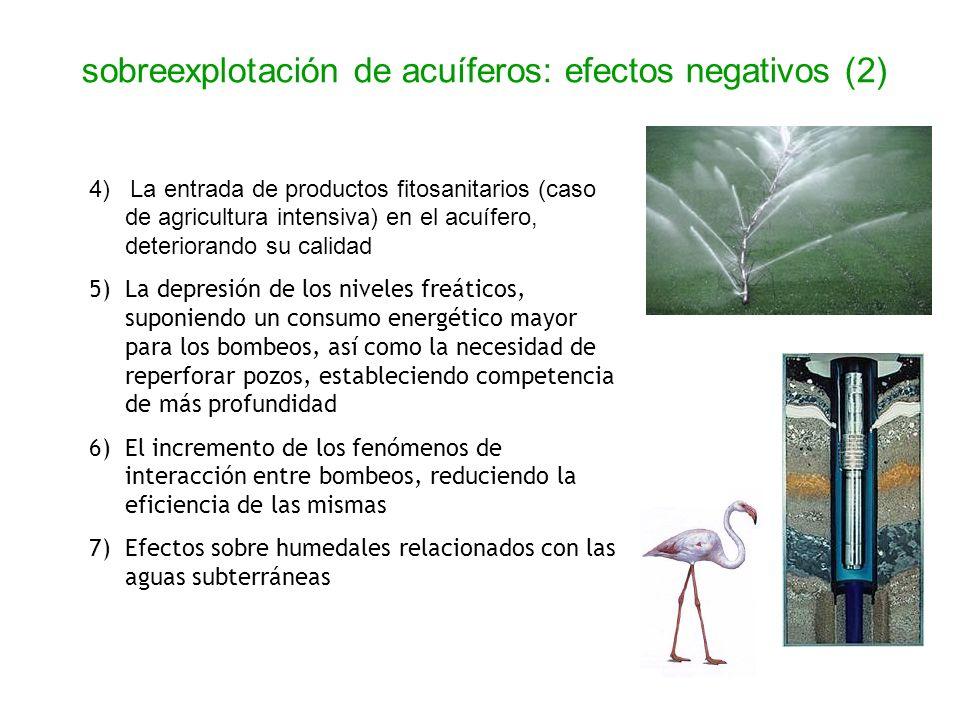 4) La entrada de productos fitosanitarios (caso de agricultura intensiva) en el acuífero, deteriorando su calidad 5) La depresión de los niveles freát