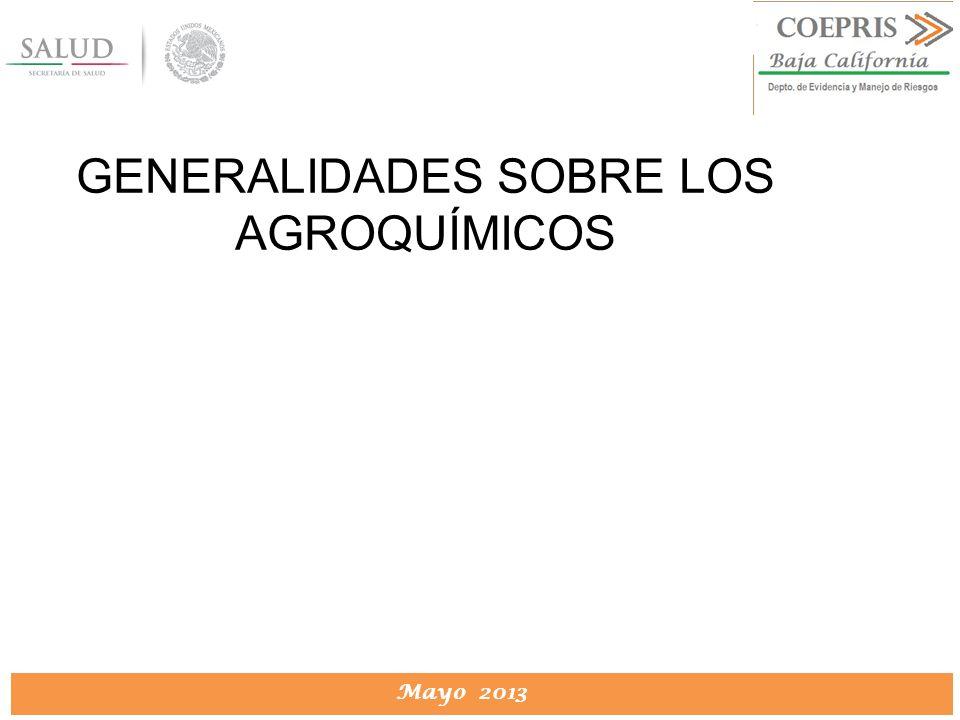 DIRECCION DE PROTECCION CONTRA RIESGOS SANITARIOS Mayo 2013 GENERALIDADES SOBRE LOS AGROQUÍMICOS