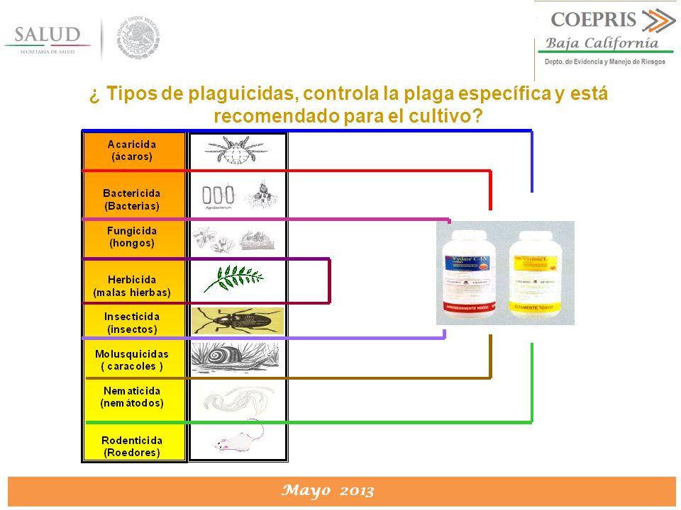 DIRECCION DE PROTECCION CONTRA RIESGOS SANITARIOS Mayo 2013 ¿ Tipos de plaguicidas, controla la plaga específica y está recomendado para el cultivo?