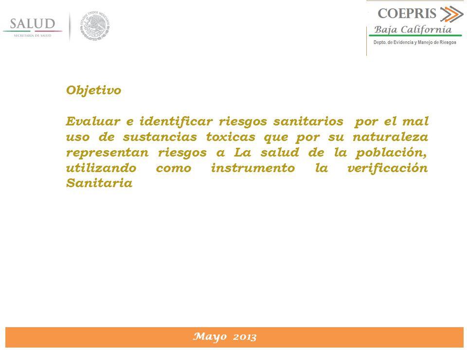 DIRECCION DE PROTECCION CONTRA RIESGOS SANITARIOS Mayo 2013 Objetivo Evaluar e identificar riesgos sanitarios por el mal uso de sustancias toxicas que
