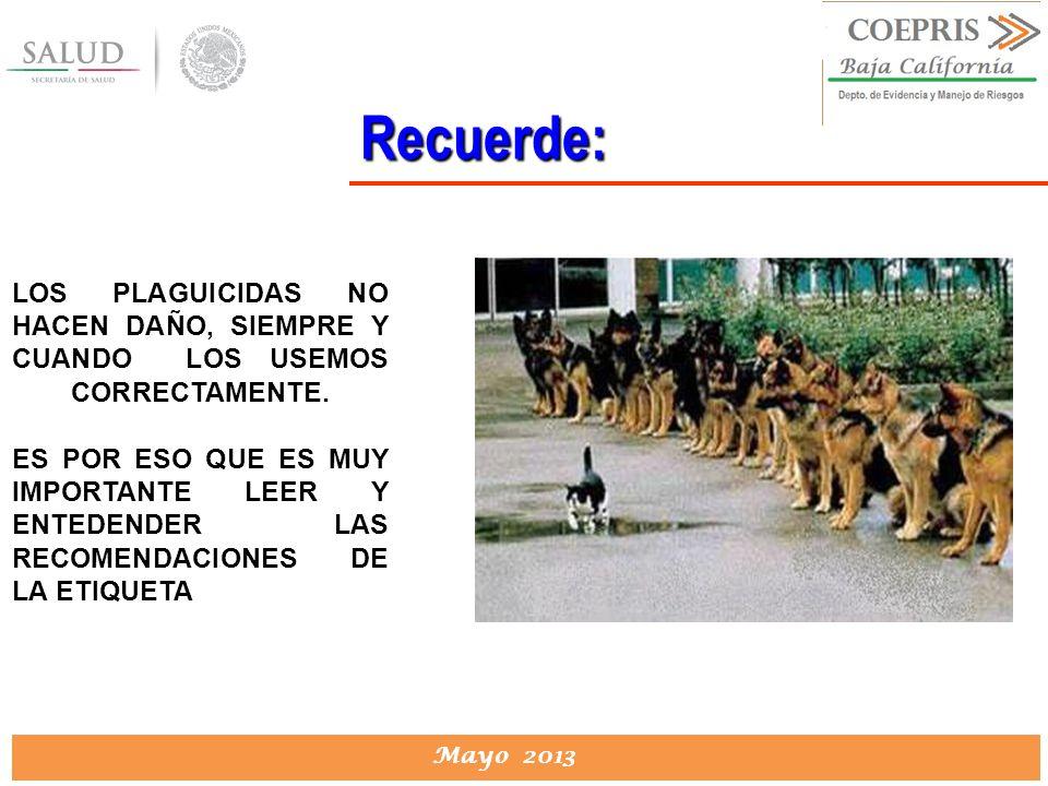 DIRECCION DE PROTECCION CONTRA RIESGOS SANITARIOS Mayo 2013 Recuerde: LOS PLAGUICIDAS NO HACEN DAÑO, SIEMPRE Y CUANDO LOS USEMOS CORRECTAMENTE. ES POR