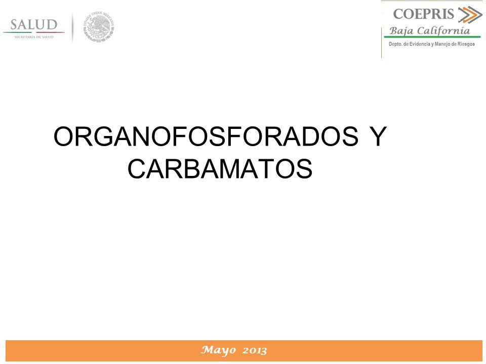 DIRECCION DE PROTECCION CONTRA RIESGOS SANITARIOS Mayo 2013 ORGANOFOSFORADOS Y CARBAMATOS
