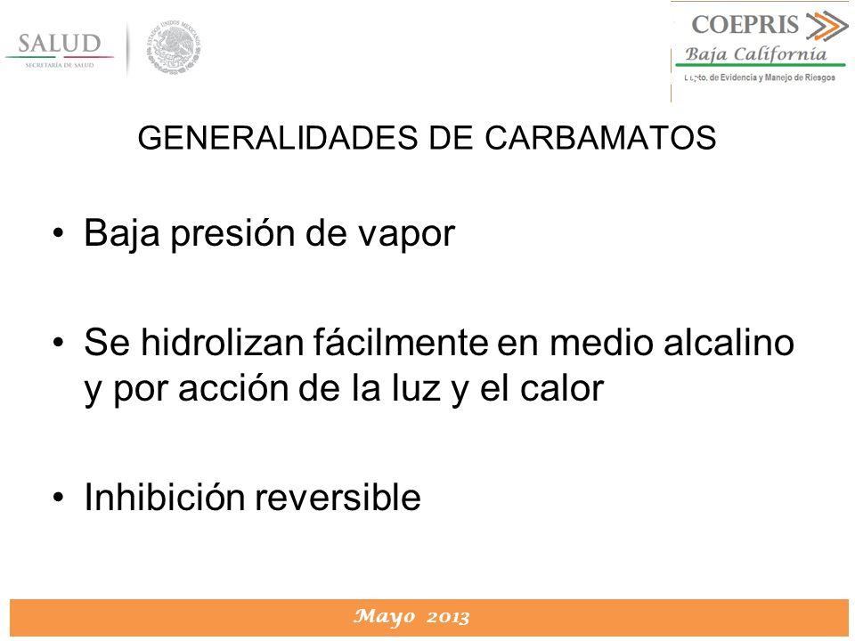 DIRECCION DE PROTECCION CONTRA RIESGOS SANITARIOS Mayo 2013 DIRECCION DE PROTECCION CONTRA RIESGOS SANITARIOS Baja presión de vapor Se hidrolizan fáci