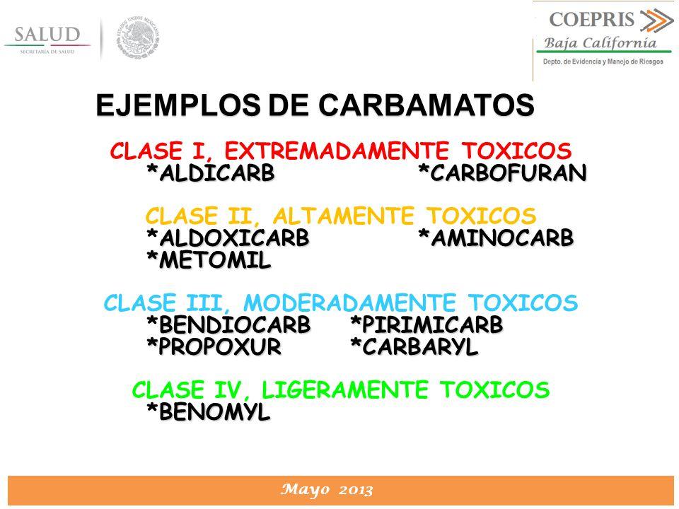 DIRECCION DE PROTECCION CONTRA RIESGOS SANITARIOS Mayo 2013 CLASE I, EXTREMADAMENTE TOXICOS *ALDICARB*CARBOFURAN CLASE II, ALTAMENTE TOXICOS ALDOXICAR