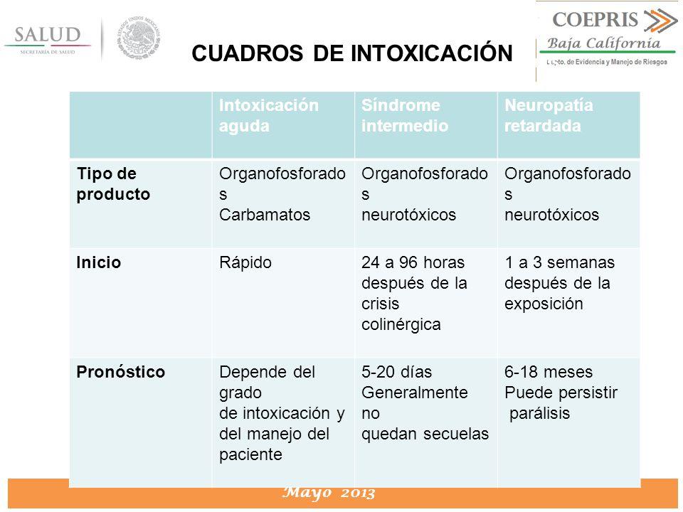 DIRECCION DE PROTECCION CONTRA RIESGOS SANITARIOS Mayo 2013 DIRECCION DE PROTECCION CONTRA RIESGOS SANITARIOS Intoxicación aguda Síndrome intermedio N