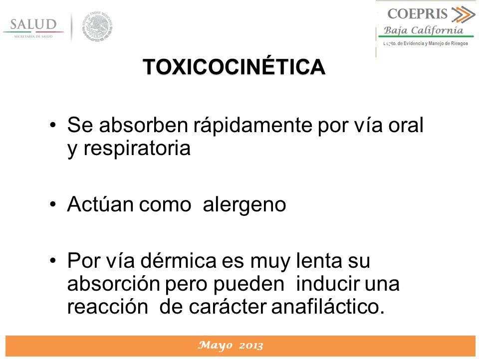 DIRECCION DE PROTECCION CONTRA RIESGOS SANITARIOS Mayo 2013 DIRECCION DE PROTECCION CONTRA RIESGOS SANITARIOS Se absorben rápidamente por vía oral y r