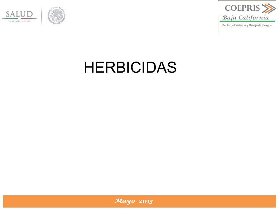 DIRECCION DE PROTECCION CONTRA RIESGOS SANITARIOS Mayo 2013 HERBICIDAS