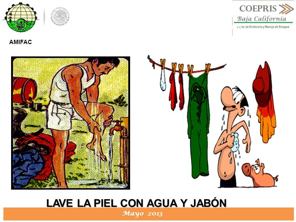DIRECCION DE PROTECCION CONTRA RIESGOS SANITARIOS Mayo 2013 DIRECCION DE PROTECCION CONTRA RIESGOS SANITARIOS LAVE LA PIEL CON AGUA Y JABÓN AMIFAC