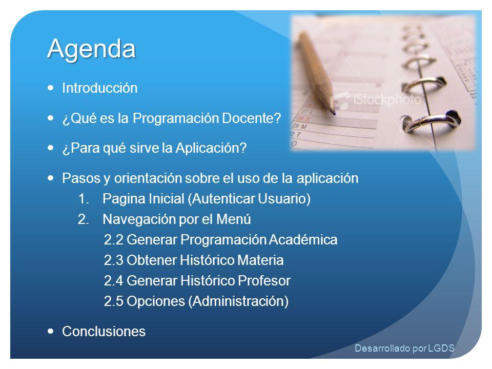 Agenda Introducción ¿Qué es la Programación Docente? ¿Para qué sirve la Aplicación? Pasos y orientación sobre el uso de la aplicación 1.Pagina Inicial