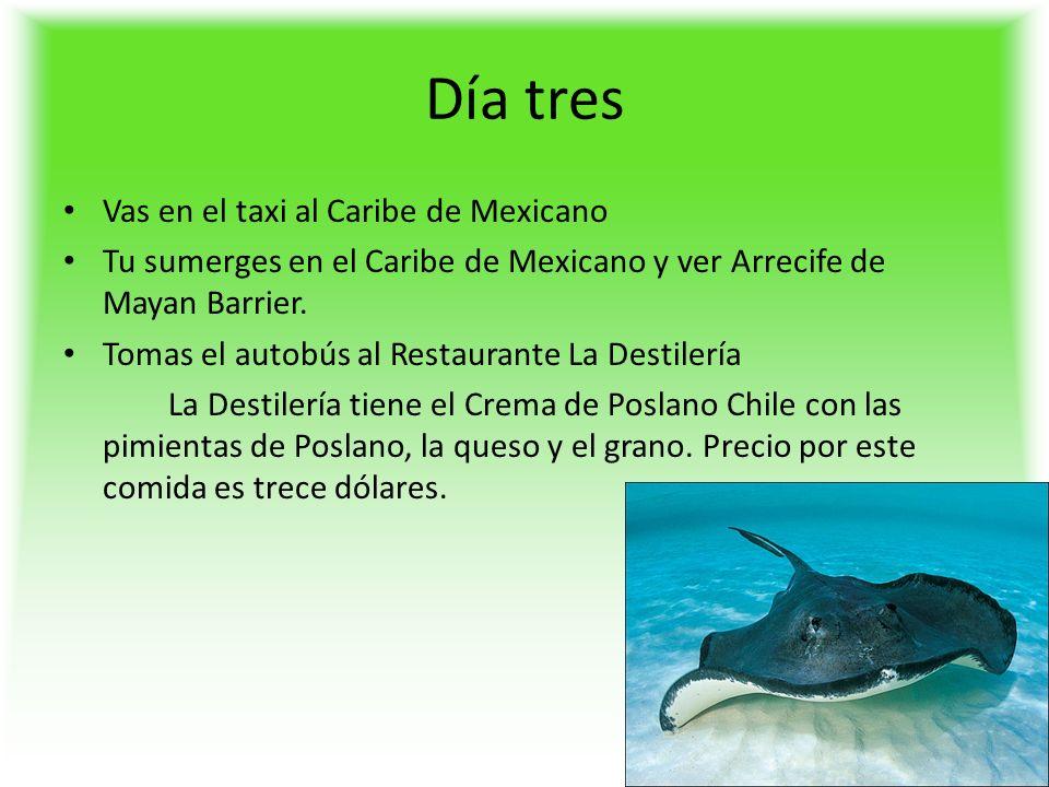 Día tres Vas en el taxi al Caribe de Mexicano Tu sumerges en el Caribe de Mexicano y ver Arrecife de Mayan Barrier.