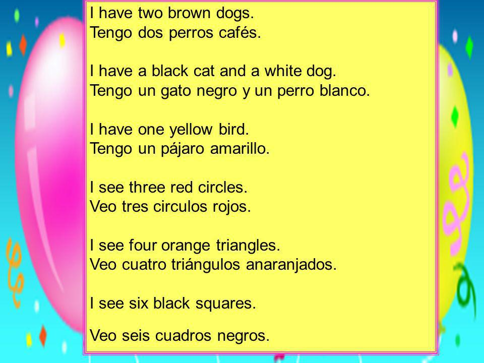I have two brown dogs. Tengo dos perros cafés. I have a black cat and a white dog. Tengo un gato negro y un perro blanco. I have one yellow bird. Teng