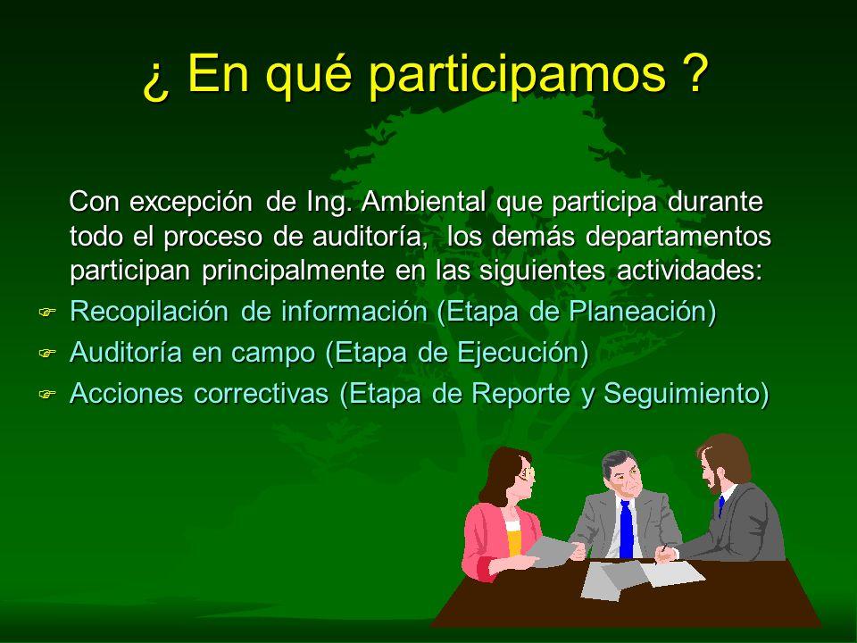 ¿ En qué participamos ? Con excepción de Ing. Ambiental que participa durante todo el proceso de auditoría, los demás departamentos participan princip