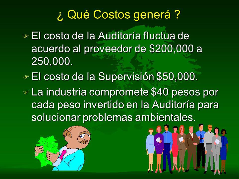 ¿ Qué Costos generá ? F El costo de la Auditoría fluctua de acuerdo al proveedor de $200,000 a 250,000. F El costo de la Supervisión $50,000. F La ind