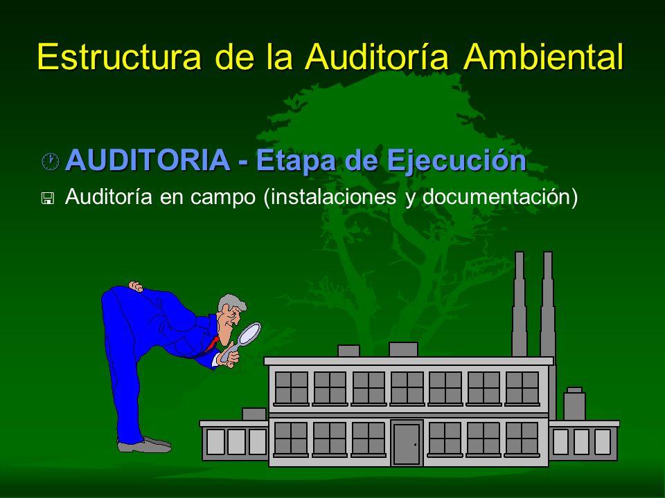 Estructura de la Auditoría Ambiental · AUDITORIA - Etapa de Ejecución < < Auditoría en campo (instalaciones y documentación)