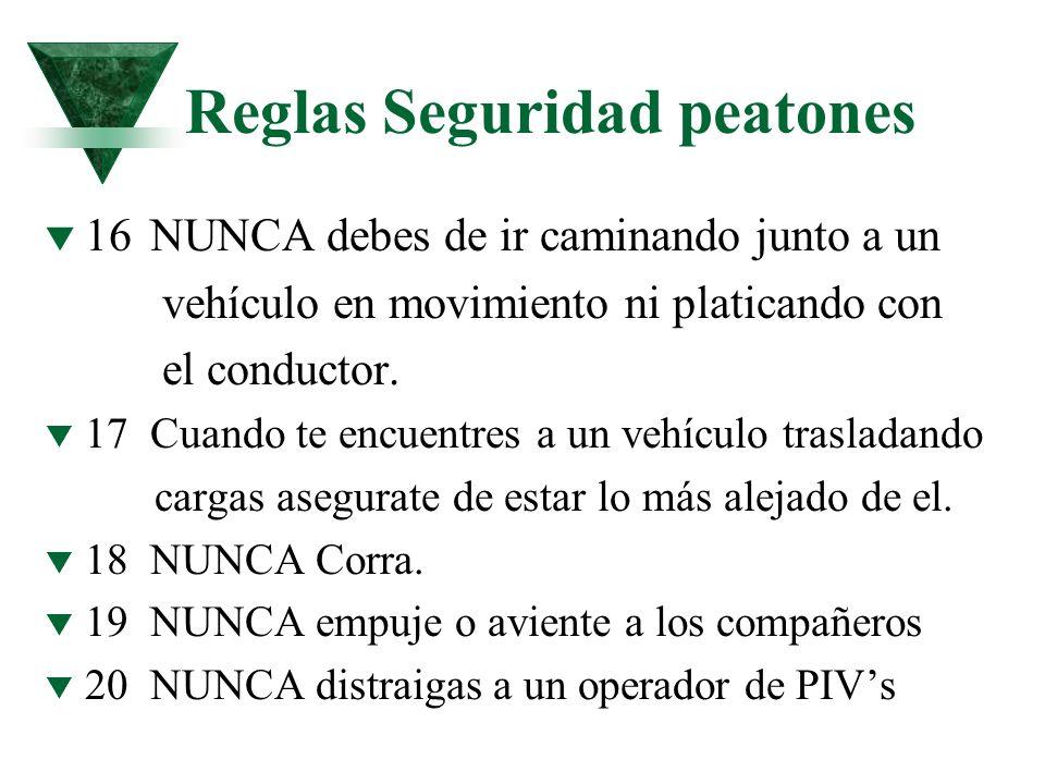 Reglas Seguridad peatones t 16NUNCA debes de ir caminando junto a un vehículo en movimiento ni platicando con el conductor. t 17Cuando te encuentres a