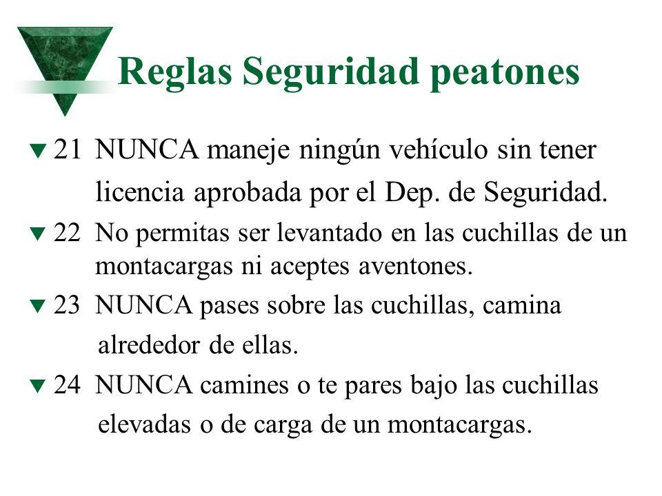 Reglas Seguridad peatones t 21NUNCA maneje ningún vehículo sin tener licencia aprobada por el Dep. de Seguridad. t 22No permitas ser levantado en las