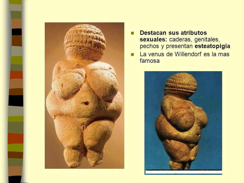 Destacan sus atributos sexuales: caderas, genitales, pechos y presentan esteatopigia La venus de Willendorf es la mas famosa