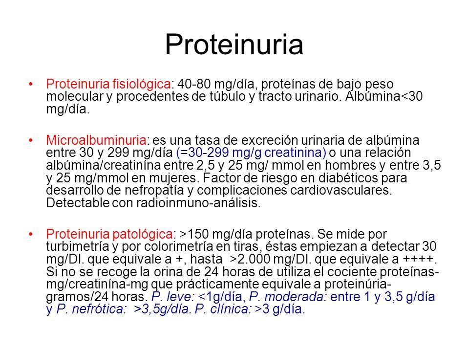 Proteinuria Proteinuria fisiológica: 40-80 mg/día, proteínas de bajo peso molecular y procedentes de túbulo y tracto urinario. Albúmina<30 mg/día. Mic