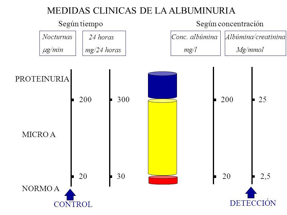 20 30 20 2,5 200 300 200 25 PROTEINURIA NORMO A MICRO A Nocturnas g/min 24 horas mg/24 horas Conc. albúmina mg/l Albúmina/creatinina Mg/mmol MEDIDAS C