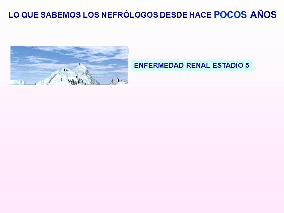 ENFERMEDAD RENAL ESTADIO 5 LO QUE SABEMOS LOS NEFRÓLOGOS DESDE HACE POCOS AÑOS