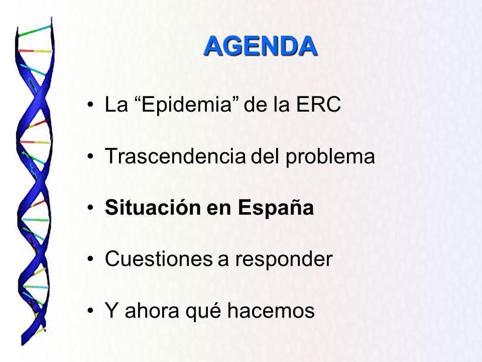 AGENDA La Epidemia de la ERC Trascendencia del problema Situación en España Cuestiones a responder Y ahora qué hacemos