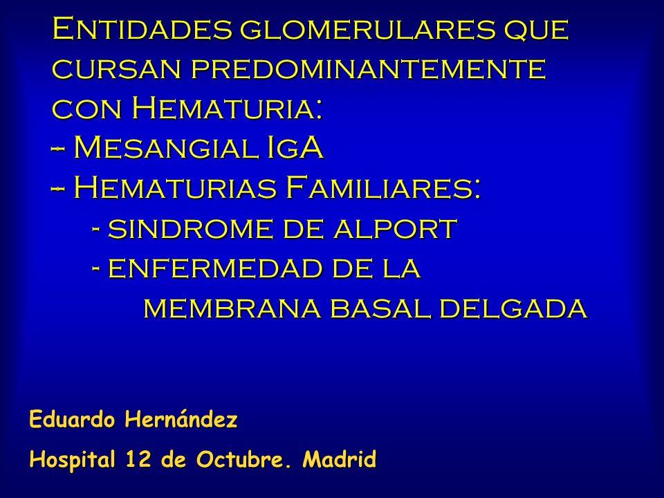 Entidades glomerulares que cursan predominantemente con Hematuria: -- Mesangial IgA -- Hematurias Familiares: - sindrome de alport - enfermedad de la