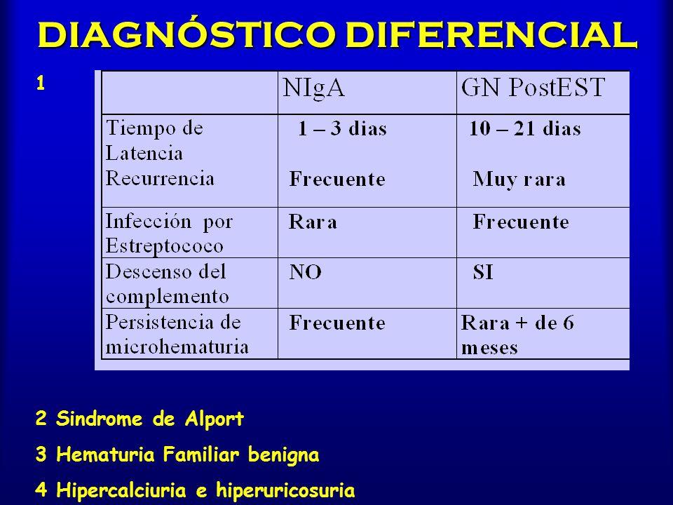 DIAGNÓSTICO DIFERENCIAL 2 Sindrome de Alport 3 Hematuria Familiar benigna 4 Hipercalciuria e hiperuricosuria 1