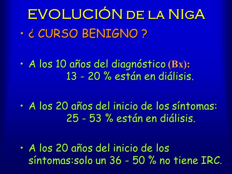 EVOLUCIÓN de la NIgA ¿ CURSO BENIGNO ?¿ CURSO BENIGNO ? A los 10 años del diagnóstico (Bx): 13 - 20 % están en diálisis.A los 10 años del diagnóstico