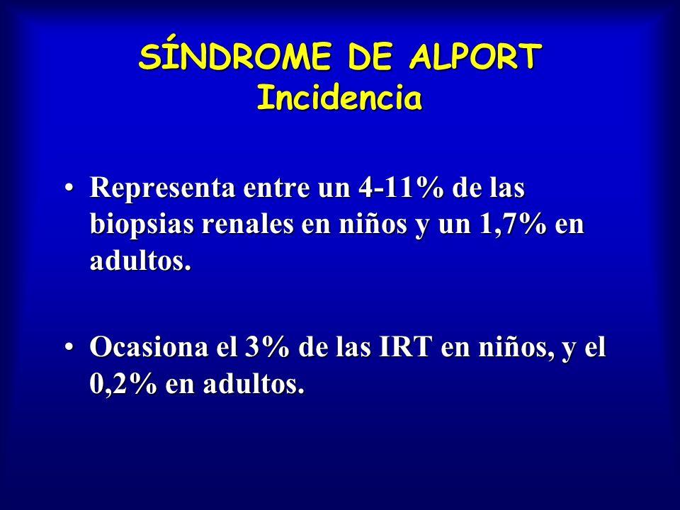 SÍNDROME DE ALPORT Incidencia Representa entre un 4-11% de las biopsias renales en niños y un 1,7% en adultos.Representa entre un 4-11% de las biopsia
