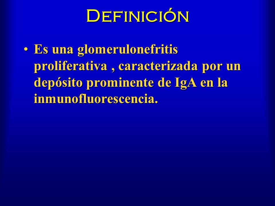 Definición Es una glomerulonefritis proliferativa, caracterizada por un depósito prominente de IgA en la inmunofluorescencia.Es una glomerulonefritis