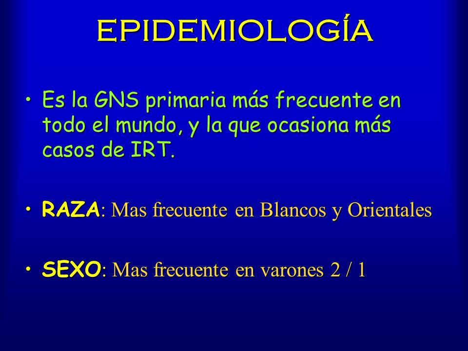 EPIDEMIOLOGÍA Es la GNS primaria más frecuente en todo el mundo, y la que ocasiona más casos de IRT.Es la GNS primaria más frecuente en todo el mundo,