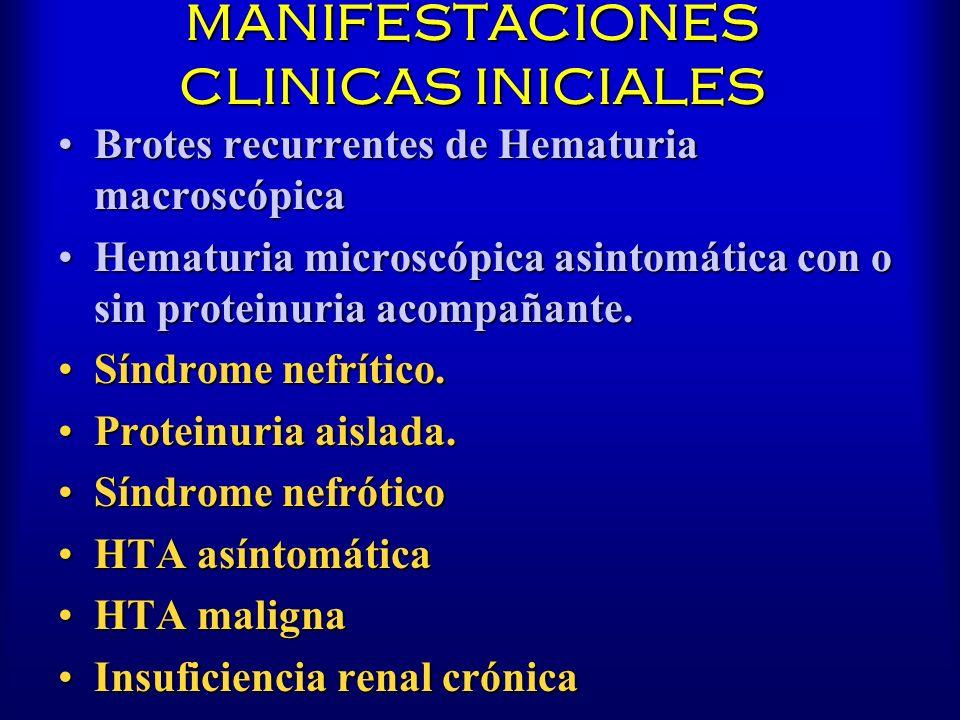 MANIFESTACIONES CLINICAS INICIALES Brotes recurrentes de Hematuria macroscópicaBrotes recurrentes de Hematuria macroscópica Hematuria microscópica asi