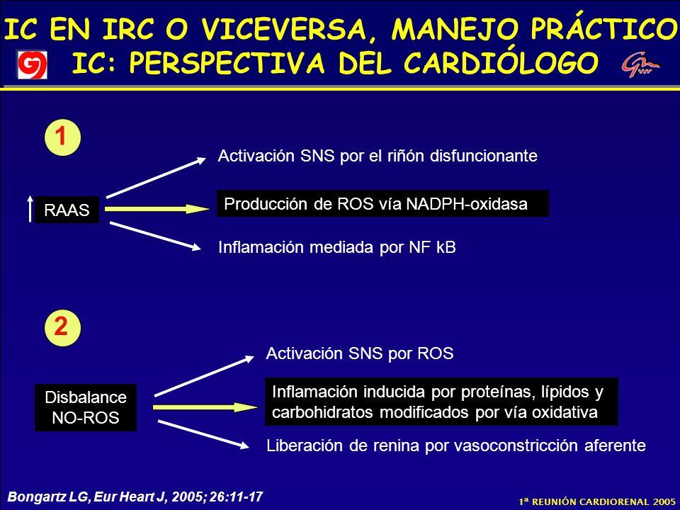 IC EN IRC O VICEVERSA, MANEJO PRÁCTICO IC: PERSPECTIVA DEL CARDIÓLOGO 1ª REUNIÓN CARDIORENAL 2005 RAAS Producción de ROS vía NADPH-oxidasa Activación