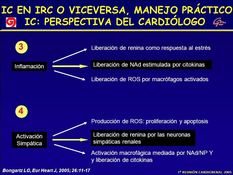 IC EN IRC O VICEVERSA, MANEJO PRÁCTICO IC: PERSPECTIVA DEL CARDIÓLOGO 1ª REUNIÓN CARDIORENAL 2005 Inflamación Liberación de NAd estimulada por citokin