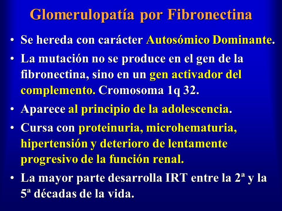 Glomerulopatía por Fibronectina Se hereda con carácter Autosómico Dominante.Se hereda con carácter Autosómico Dominante. La mutación no se produce en