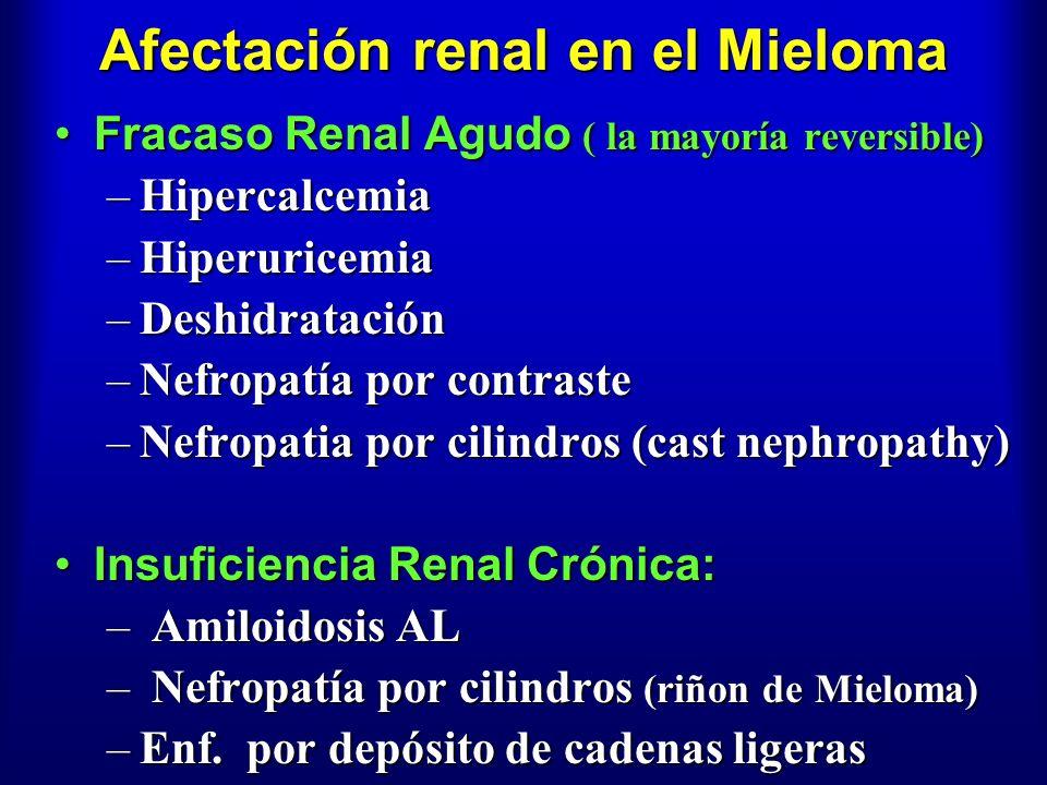 Afectación renal en el Mieloma Fracaso Renal Agudo ( la mayoría reversible)Fracaso Renal Agudo ( la mayoría reversible) –Hipercalcemia –Hiperuricemia