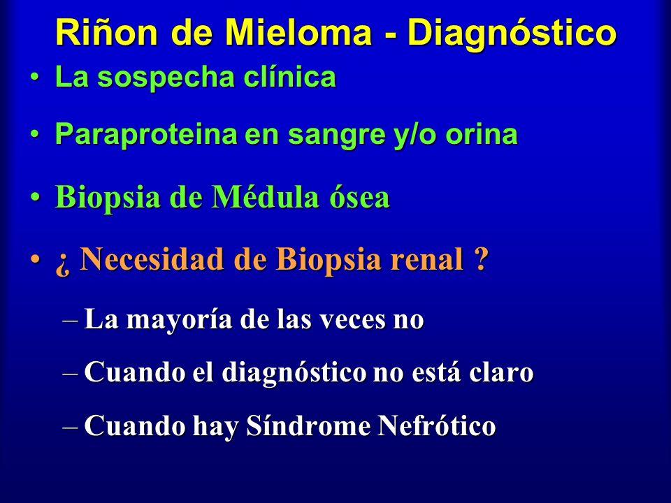 Riñon de Mieloma - Diagnóstico La sospecha clínicaLa sospecha clínica Paraproteina en sangre y/o orinaParaproteina en sangre y/o orina Biopsia de Médu