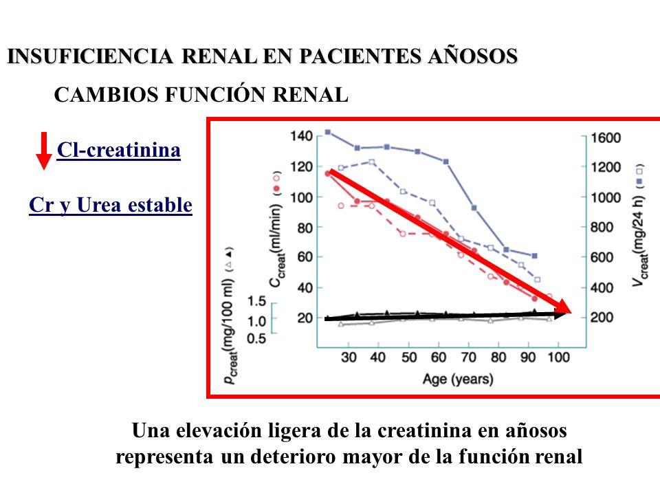 INSUFICIENCIA RENAL EN PACIENTES AÑOSOS CAMBIOS FUNCIÓN RENAL Cl-creatinina Cr y Urea estable Una elevación ligera de la creatinina en añosos represen