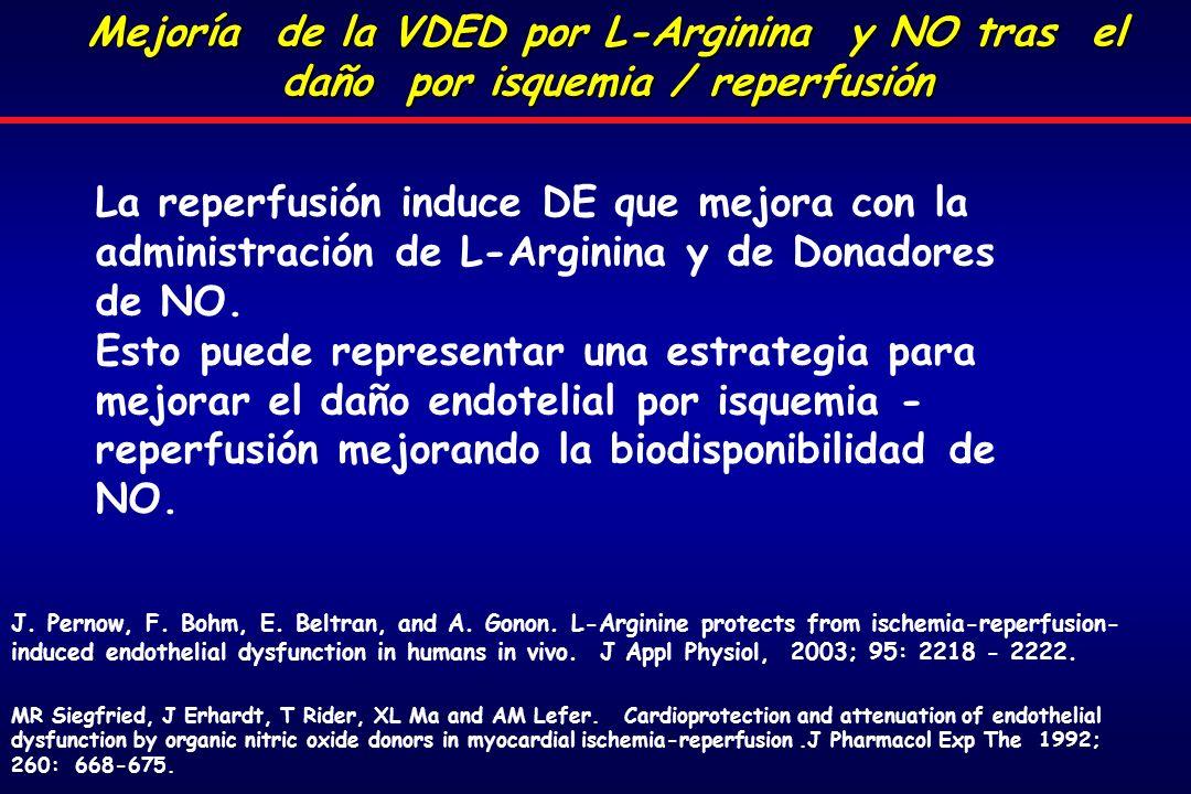 La reperfusión induce DE que mejora con la administración de L-Arginina y de Donadores de NO.