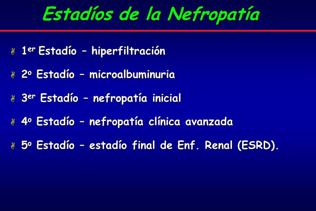 A 1 er Estadío – hiperfiltración A 2 o Estadío – microalbuminuria A 3 er Estadío – nefropatía inicial A 4 o Estadío – nefropatía clínica avanzada A 5 o Estadío – estadío final de Enf.