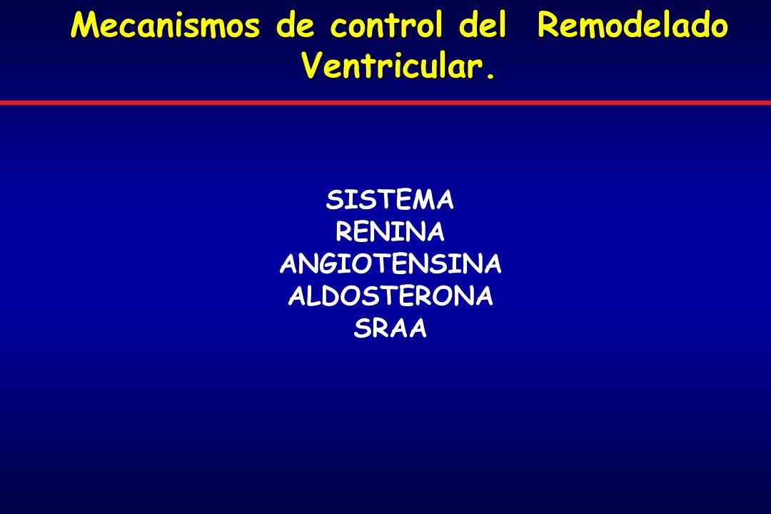 Mecanismos de control del Remodelado Ventricular. SISTEMA RENINA ANGIOTENSINA ALDOSTERONA SRAA