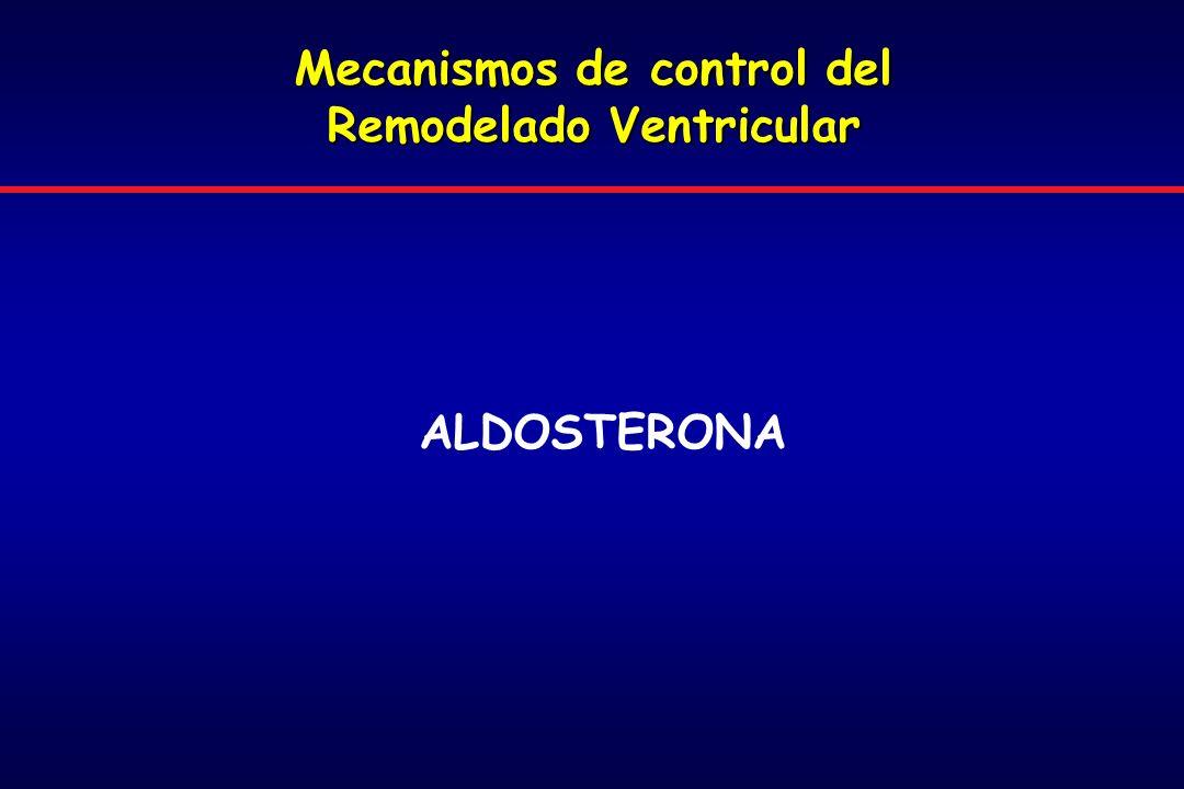 Mecanismos de control del Remodelado Ventricular ALDOSTERONA