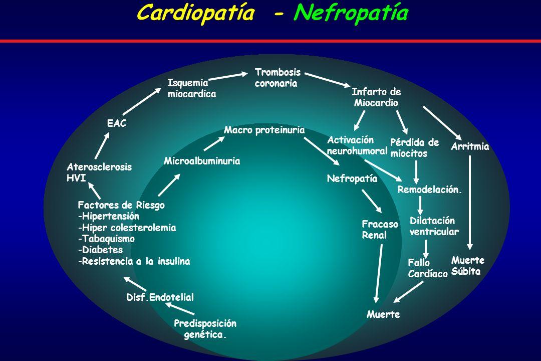 Aterosclerosis HVI EAC Isquemia miocardica Trombosis coronaria Infarto de Miocardio Arritmia Muerte Súbita Pérdida de miocitos Predisposición genética.