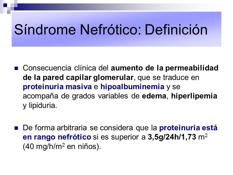 Síndrome Nefrótico: Trascendencia Implica una lesión glomerular importante.