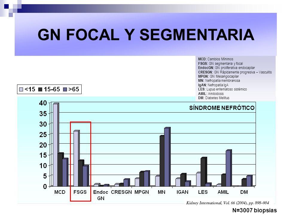MCD: Cambios Mínimos FSGS: GN segmentaria y focal EndocGN: GN proliferativa endocapilar CRESGN: GN Rápidamente progresiva – Vasculitis MPGN: GN Mesang