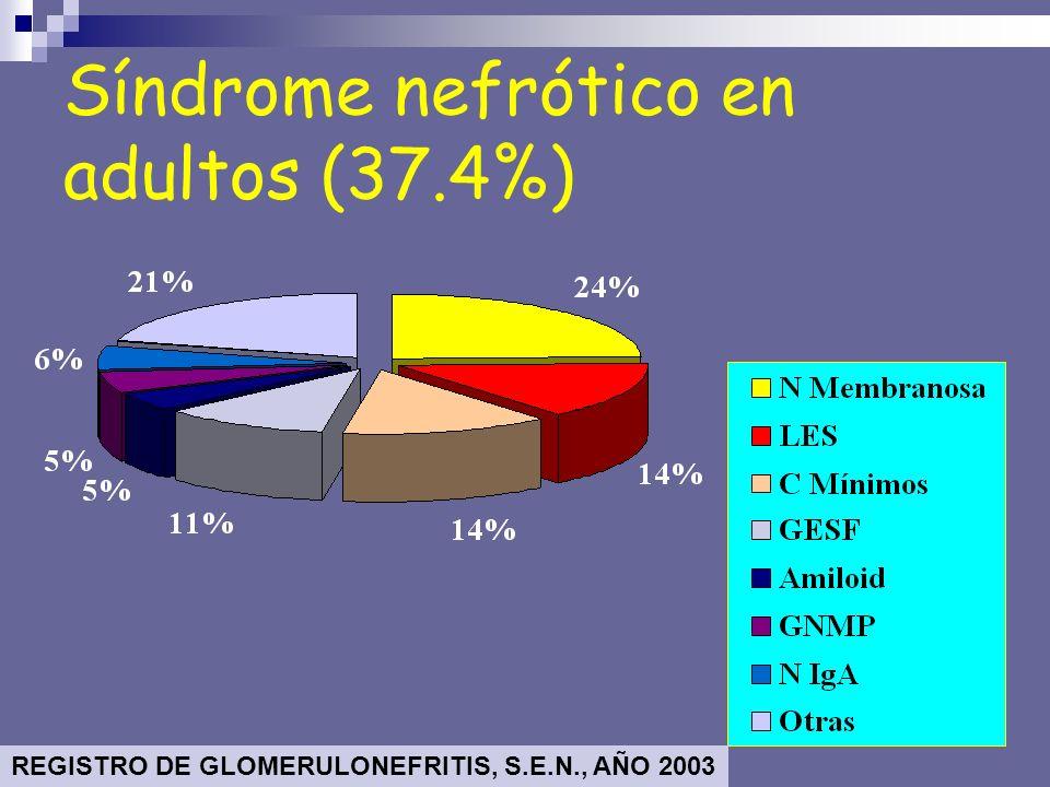 Síndrome nefrótico en adultos (37.4%) REGISTRO DE GLOMERULONEFRITIS, S.E.N., AÑO 2003