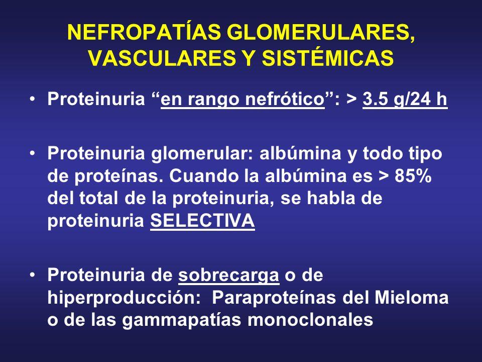 NEFROPATÍAS GLOMERULARES, VASCULARES Y SISTÉMICAS Proteinuria en rango nefrótico: > 3.5 g/24 h Proteinuria glomerular: albúmina y todo tipo de proteín
